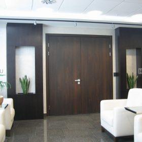 офисные двери фото